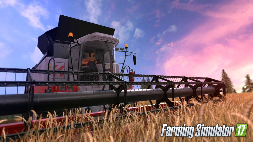 Farming Simulator 17 Screenshot-3